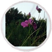 Pink Flowers In Front Of Trees Round Beach Towel