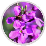 Pink Flowers With Bee . 40d4803 Round Beach Towel