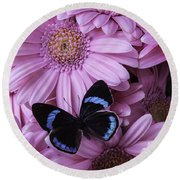 Pink Gerbera Daises And Butterfly Round Beach Towel
