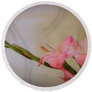 Pink Gladiola Round Beach Towel