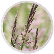 Pink Grass Round Beach Towel