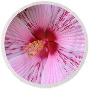 Pink Hibiscus Macro Round Beach Towel