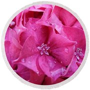 Pink Hydrangea After Rain Round Beach Towel