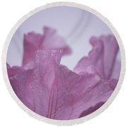 Pink Iris Study 8 Round Beach Towel