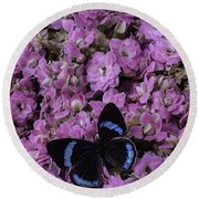 Pink Kalanchoe And Black Butterfly Round Beach Towel