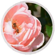 Pink Lady - Rose Round Beach Towel