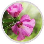 Pink Light Rose Of Sharon 2016 Round Beach Towel