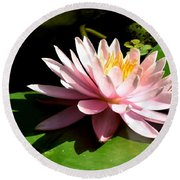 Pink Lily 9 Round Beach Towel