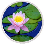 Pink Lily Round Beach Towel