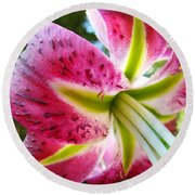Pink Lily Summer Botanical Garden Art Prints Baslee Troutman Round Beach Towel