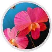 Pink Lux Butterfly Round Beach Towel
