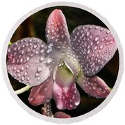 Pink Orchid And Dewdrops 013 Round Beach Towel