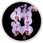 Pink Orchid Iv Round Beach Towel