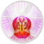 Pink Orchid Round Beach Towel by Dave Bowman