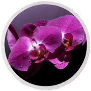 Pink Orchid Flowers Round Beach Towel