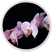Pink Orchid Viii Round Beach Towel