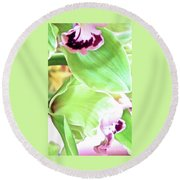 Pink Orchid With Green 1 Round Beach Towel