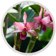 Pink Orchids - Exotic Tropical Glow Round Beach Towel
