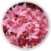 Pink Pentas Beauties Round Beach Towel