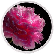 Pink Peony On A Black Background Round Beach Towel