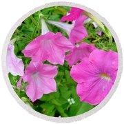 Pink Petunia Flower 11 Round Beach Towel
