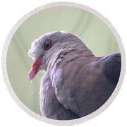Pink Pigeon Nesoenas Mayeri Round Beach Towel