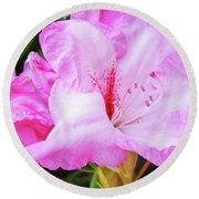 Pink Rhododendron Art Print Floral Canvas Rhodies Baslee Troutman Round Beach Towel