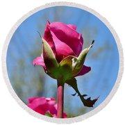 Pink Rose Against Blue Sky Iv Round Beach Towel