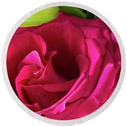 Pink Rose And Bud Close-up Round Beach Towel