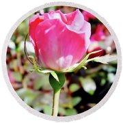 Pink - Rose Bud - Beauty Round Beach Towel
