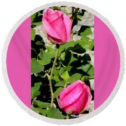Pink Rose Buds Round Beach Towel