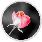 The October Rose    Round Beach Towel