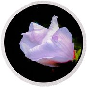 Pink Rose Of Sharon Glowing On A Black Background Round Beach Towel