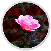 Pink Rose On Red Brick Wall Round Beach Towel
