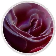 Pink Rose Portrait Round Beach Towel