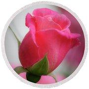 Pink Rosebud 1 Round Beach Towel