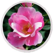 Pink Roses Round Beach Towel