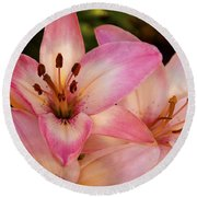 Pink Spring Lilly Round Beach Towel