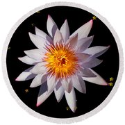 Pink Tipped Water Lily On Black Round Beach Towel