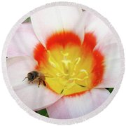 Pink Tulip Flower Orange Art Prints Honey Bee Baslee Troutman Round Beach Towel