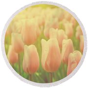 Pink Tulip Flowers In The Garden On Sunny Day In Spring Round Beach Towel