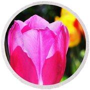 Pink Tulip In Sunlight Round Beach Towel