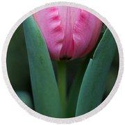Pink Tulip Panoramic Round Beach Towel
