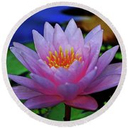 Pink Water Lily 007 Round Beach Towel