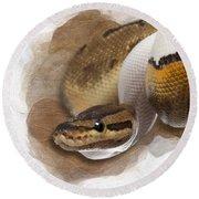 Pinstripe Pied Royal Python 01 Round Beach Towel