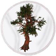Pinus Aristata Tree Round Beach Towel