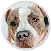 Pit Bull Dog - Pure Love Round Beach Towel