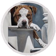 Pitbull Stare Round Beach Towel