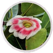 Pitch Apple Blossom Round Beach Towel