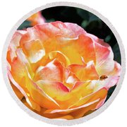 Planet Of The Rose Round Beach Towel